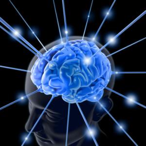 PageLines- Brain.jpg